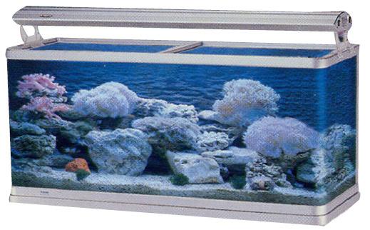 Acuario marino r1 peces acuarios y peceras acuario for Acuario marino precio